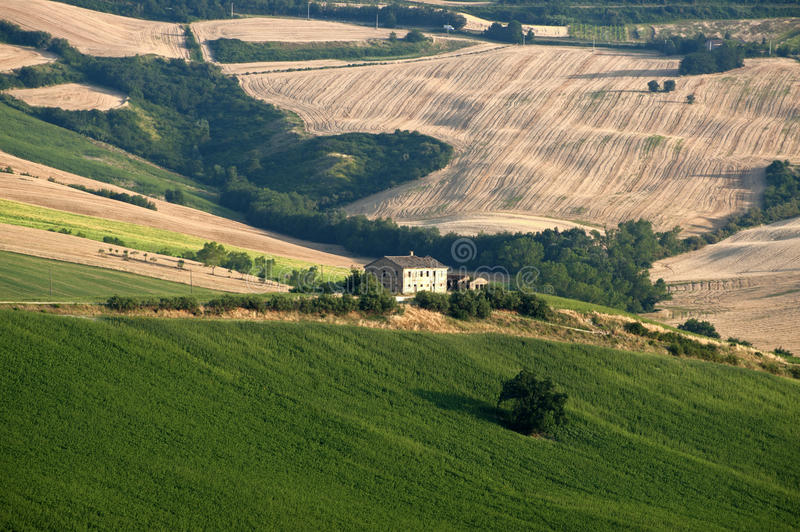 Download Marches (Italy) - Landscape At Summer Royalty Free Stock Photo - Image: 20722425