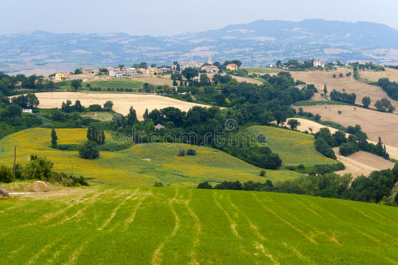 Download Marches (Italy) - Landscape At Summer Stock Photo - Image: 21366168