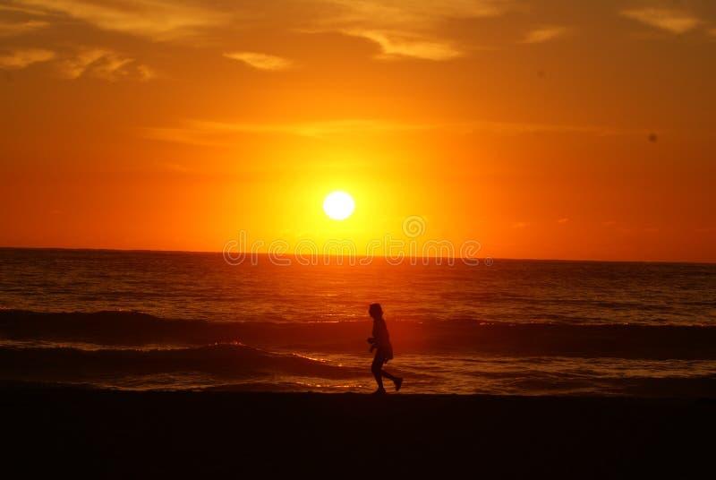 Marcheur de lever de soleil de Tathra image stock