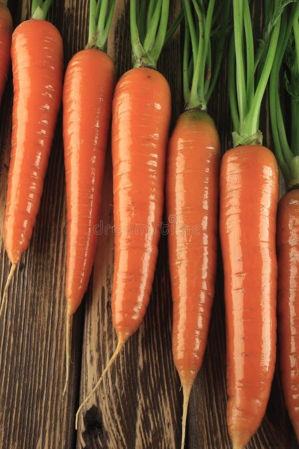 marchewka świeża zdjęcie stock