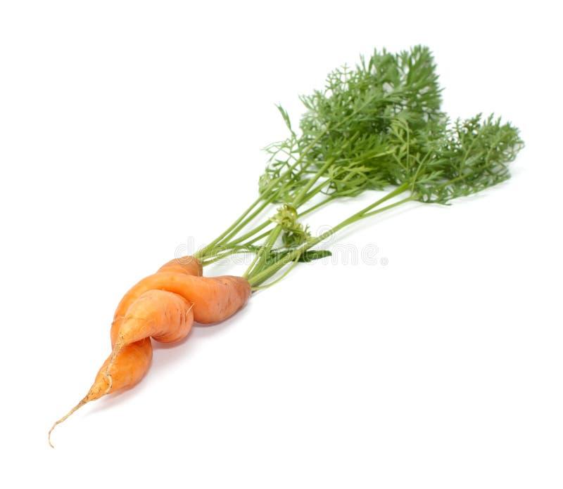 Download Marchewki. obraz stock. Obraz złożonej z posiłek, warzywa - 28957187