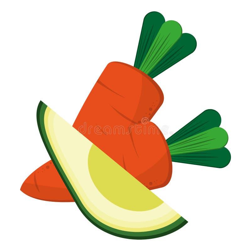 Marchewki i avocado warzywa karmowi ilustracja wektor