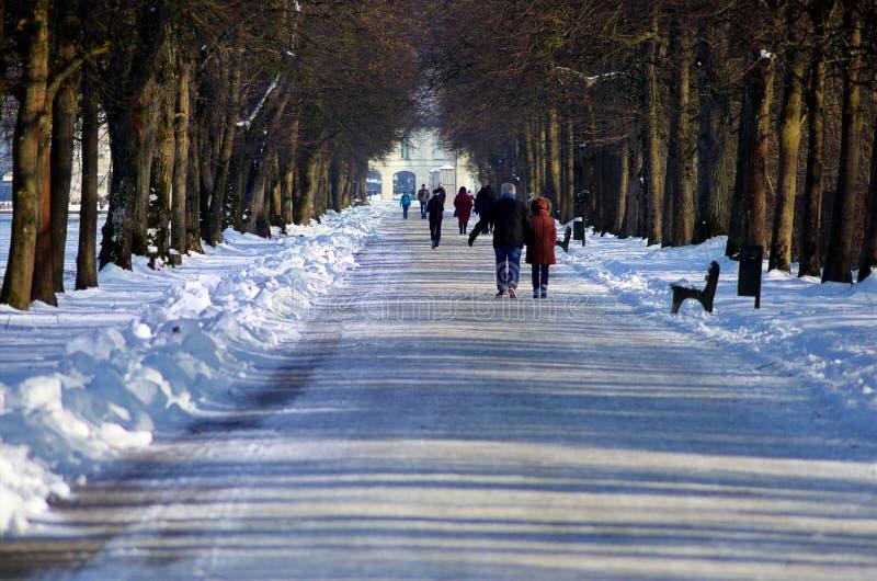 Marchez en parc dans un jour d'hiver photo stock