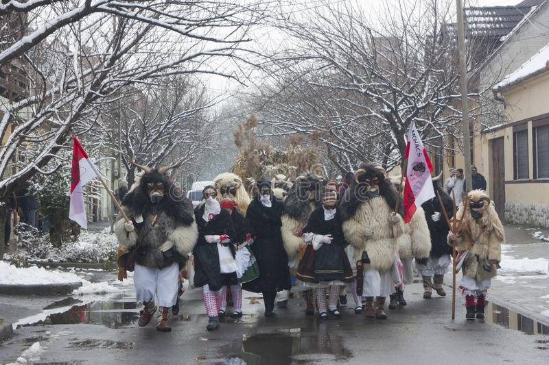 Marching peoples in mask and costume royalty free stock images