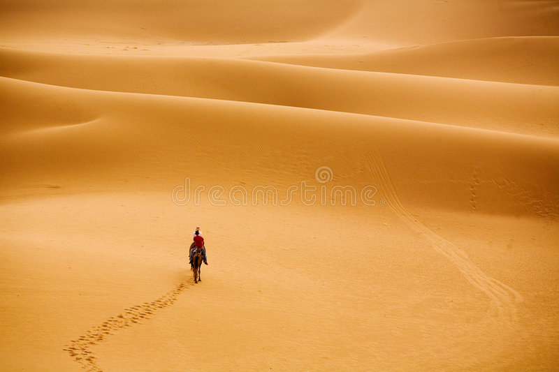 Marching to desert. A group of people traveling into desert stock photo