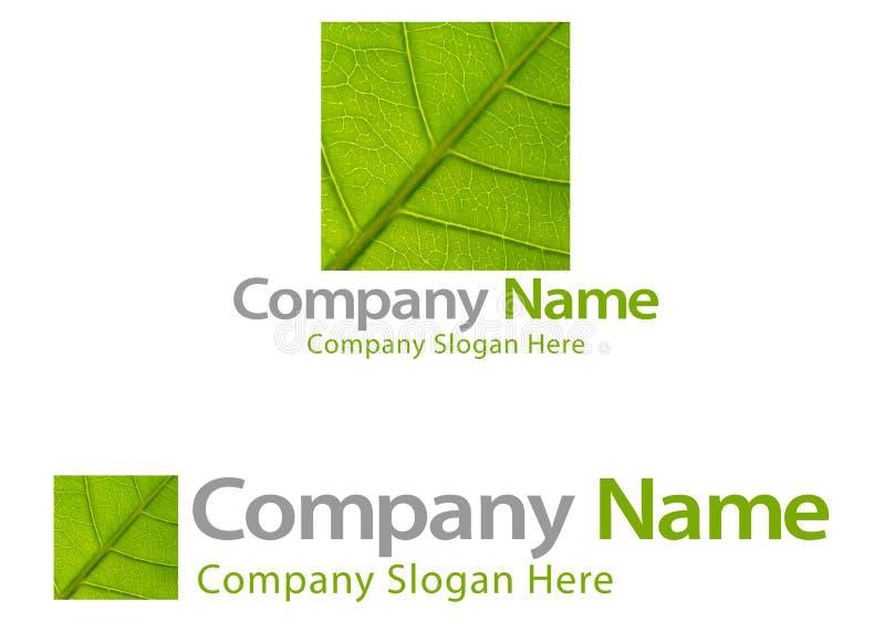 Marchio verde dell'azienda del foglio illustrazione di stock