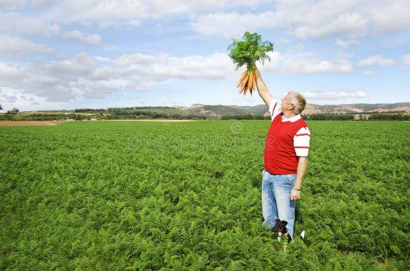 marchwiany rolnik obraz stock