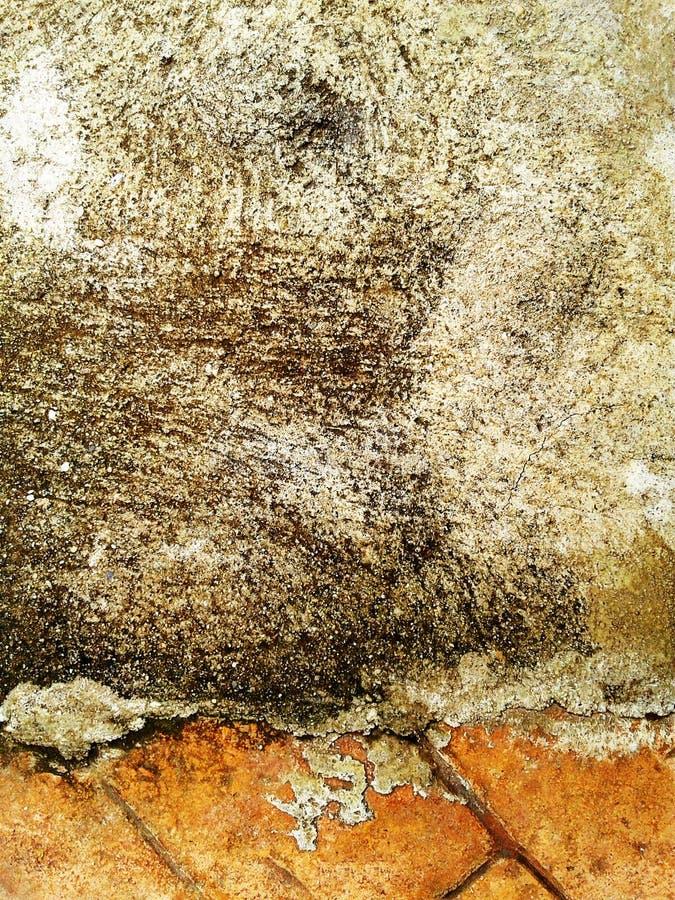 Marciapiede dai mattoni rossi Fondo cemento fotografie stock libere da diritti