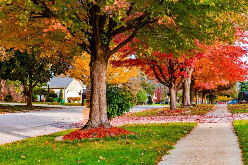 Marciapiede e via suburbani della vicinanza in autunno fotografie stock