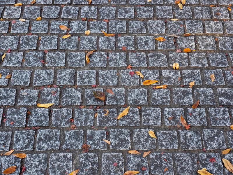 Marciapiede fatto con i ciottoli con le foglie di autunno su una superficie fotografia stock libera da diritti