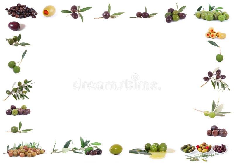 Marco aislado de las aceitunas en el fondo blanco imágenes de archivo libres de regalías