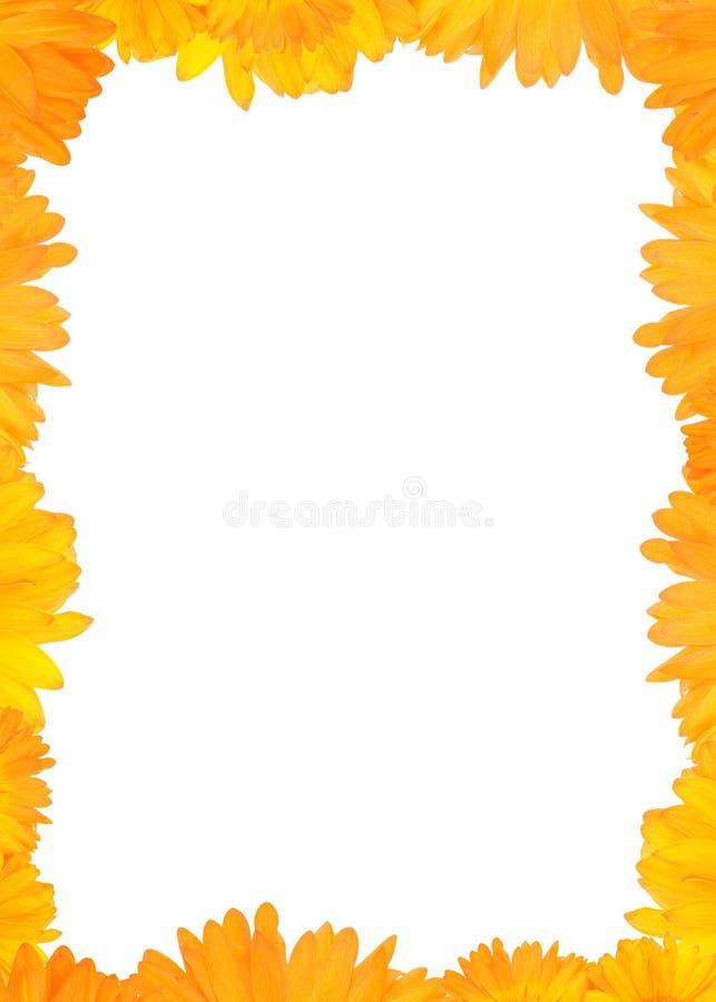 Increíble Marco Amarillo Elaboración - Ideas de Arte Enmarcado ...