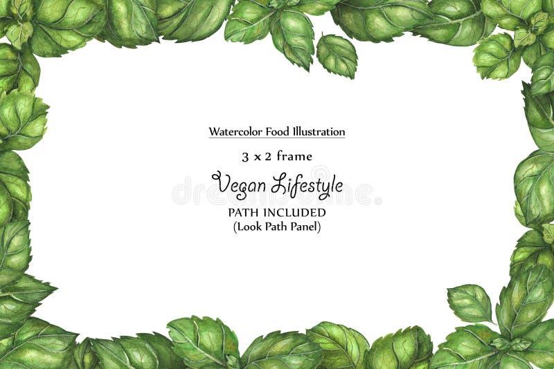 Marco ancho del vegano de la acuarela por las hojas de la albahaca de la frescura stock de ilustración