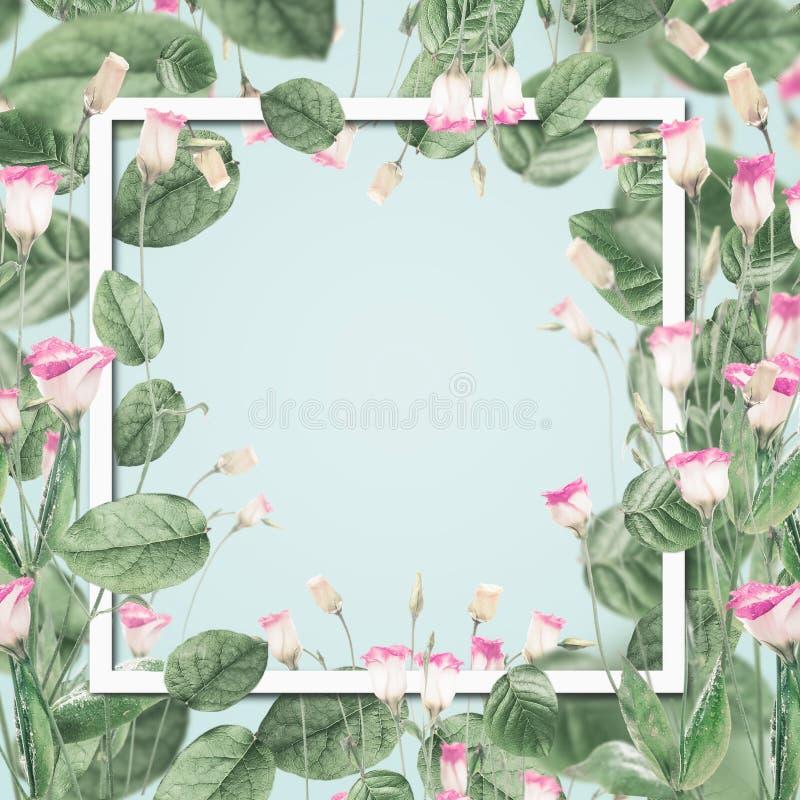 Marco botánico hermoso con las flores y las hojas rosadas en el fondo azul en colores pastel libre illustration