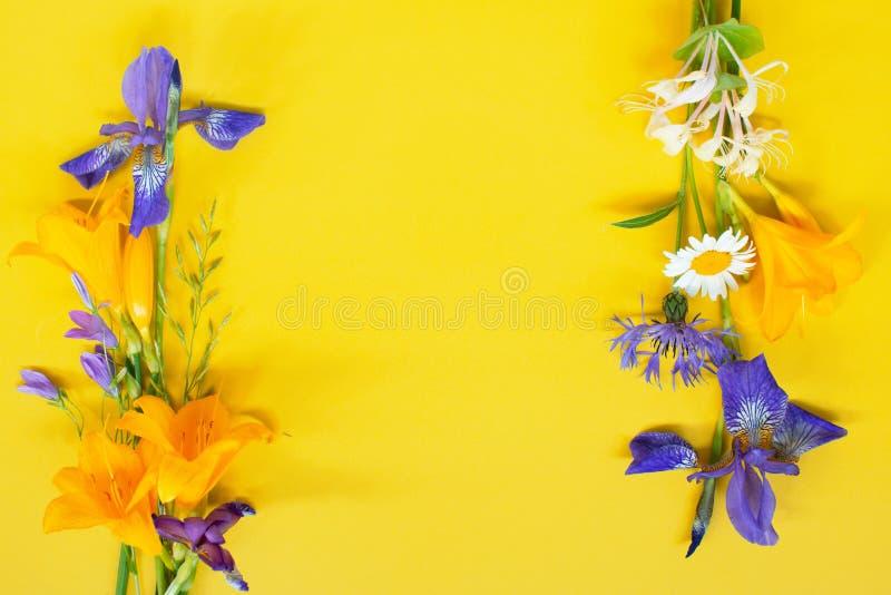 Marco Violeta De Las Flores Fotos De Stock - Descarga