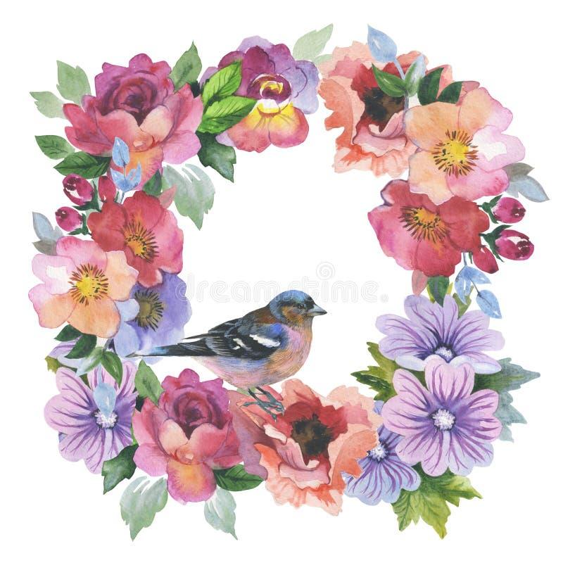 Marco color de rosa de la flor del Wildflower en un estilo de la acuarela aislado stock de ilustración
