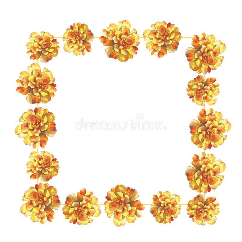 Marco color de rosa del fondo de la flor de la maravilla del crisantemo del calendula amarillo de la petunia en el dibujo de la a libre illustration