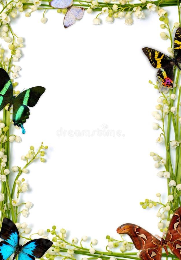Marco con las mariposas foto de archivo. Imagen de nota - 13517198