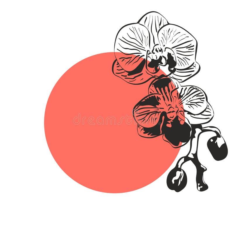 Marco coralino redondo con la flor de la orquídea, silueta negra con el lugar para su texto en el fondo blanco ilustración del vector