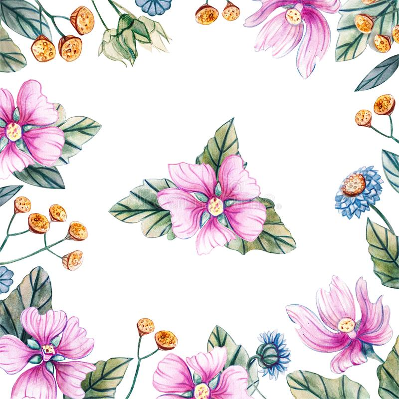 Marco cuadrado de flores wildflowers ilustración del vector