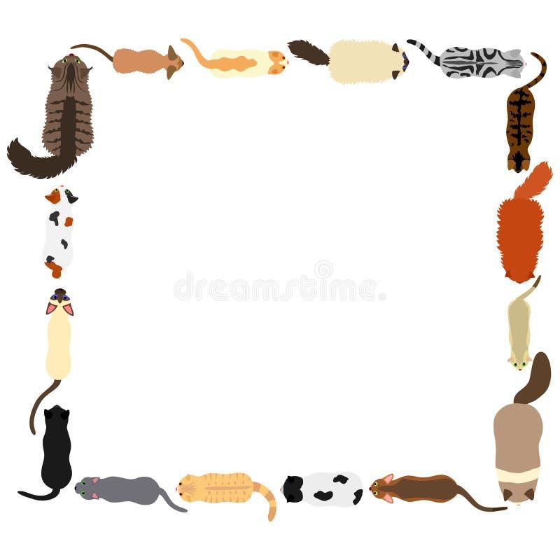 Marco cuadrado de los gatos ilustración del vector