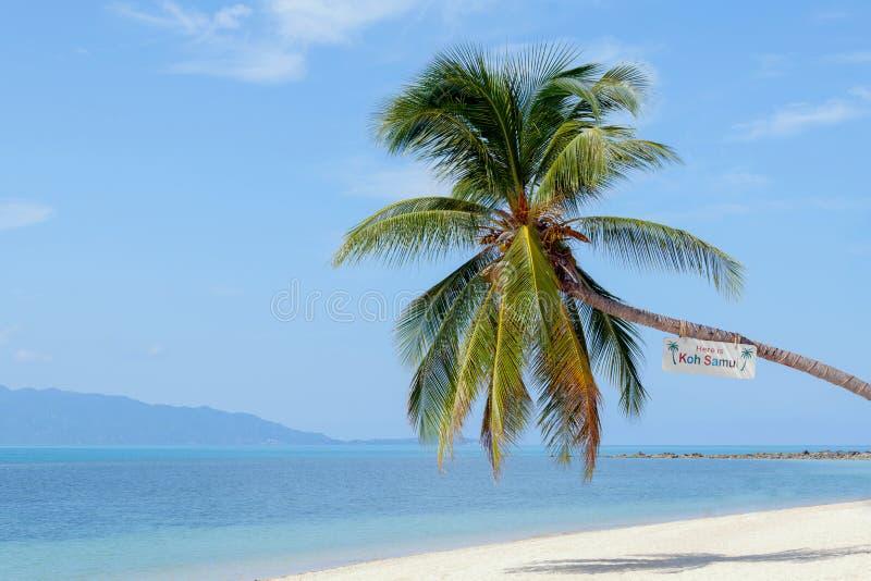 Marco da ilha de Koh Samui da praia de Baan TAI imagens de stock royalty free