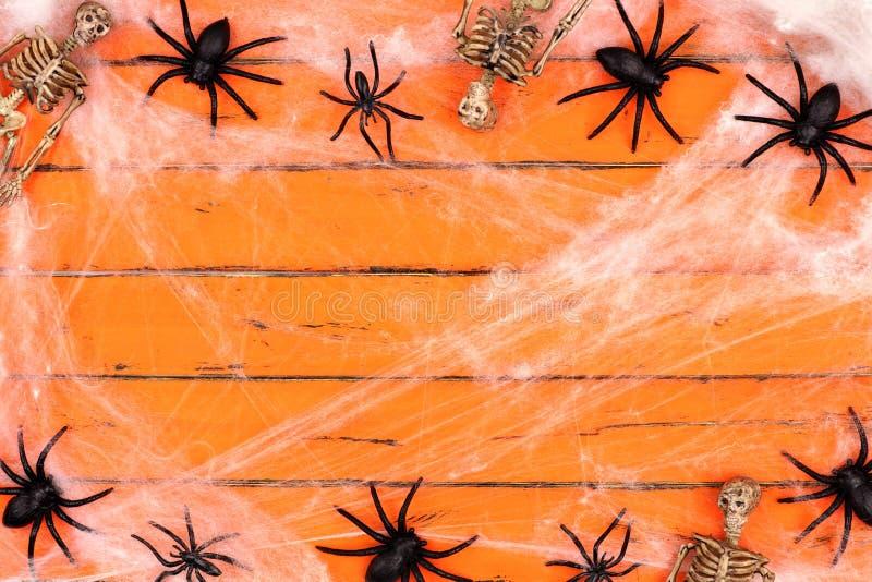 Marco de Halloween con los esqueletos y los web de araña en la madera anaranjada fotos de archivo