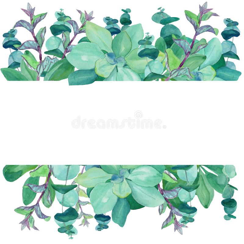 Marco de la acuarela del eucalipto y de la menta de los azules cielos stock de ilustración