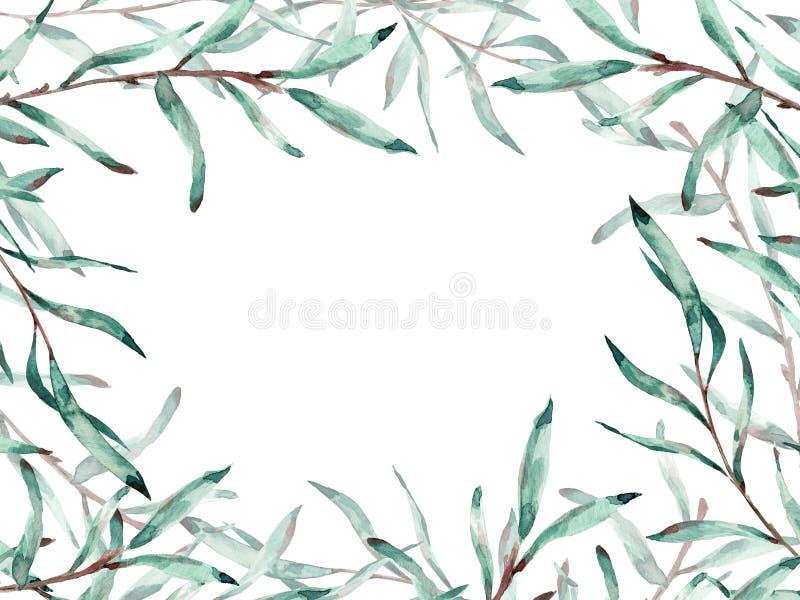 Marco de la acuarela de las ramas del sauce de gatito con el espacio de la copia Ilustraci?n stock de ilustración