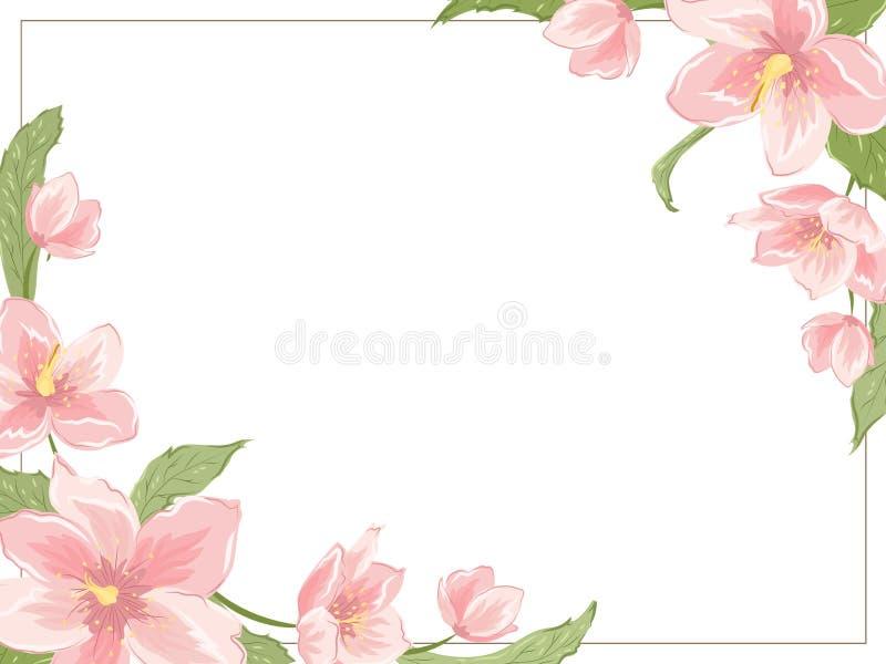 Marco de la esquina del hellebore de Sakura de la magnolia horizontal libre illustration