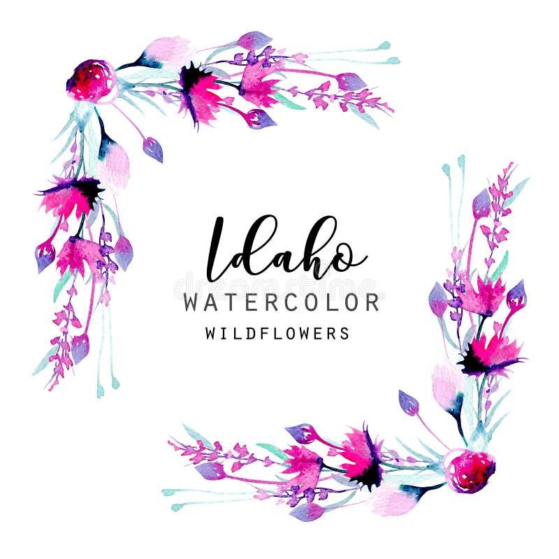 Marco de la esquina de la frontera con los wildflowers y la lavanda simples del rosa de la acuarela ilustración del vector