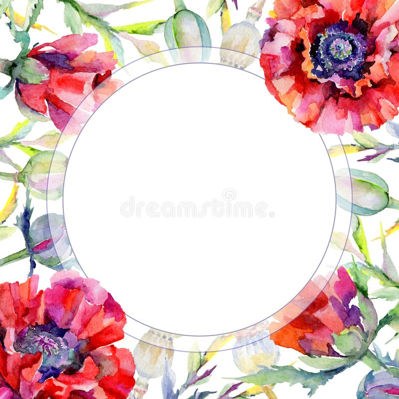Download Marco De La Flor De La Amapola Del Wildflower En Un Estilo De La Acuarela Stock de ilustración - Ilustración de contexto, flor: 100527417