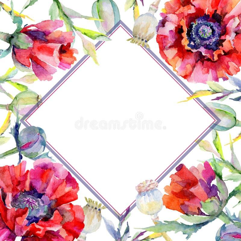 Download Marco De La Flor De La Amapola Del Wildflower En Un Estilo De La Acuarela Stock de ilustración - Ilustración de elemento, flor: 100527502