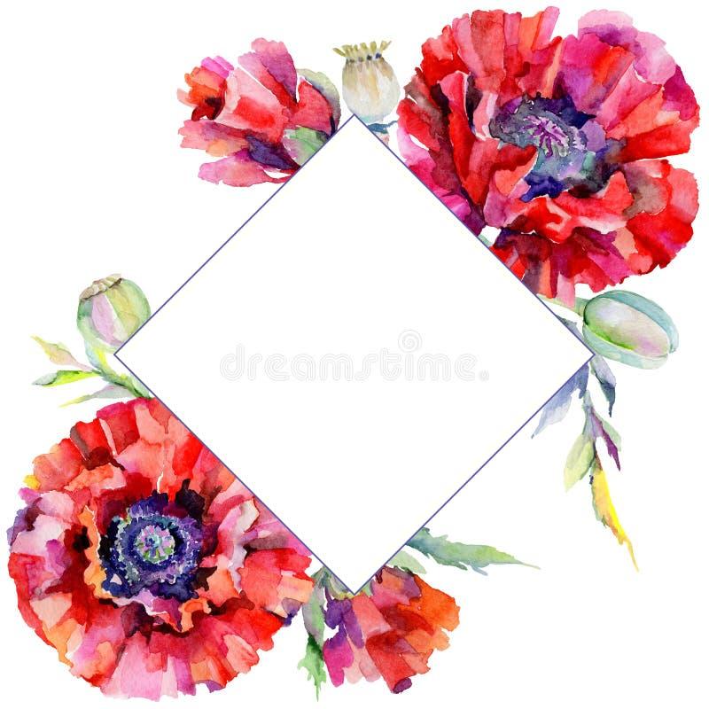 Download Marco De La Flor De La Amapola Del Wildflower En Un Estilo De La Acuarela Stock de ilustración - Ilustración de travieso, floral: 100527551