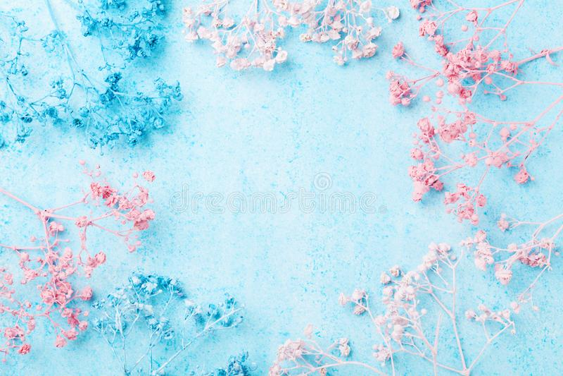 Marco de la flor de la boda en la opinión superior del fondo en colores pastel azul Modelo floral hermoso Endecha plana Mujer o t fotos de archivo