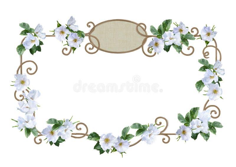 Marco de la flor de la acuarela stock de ilustración