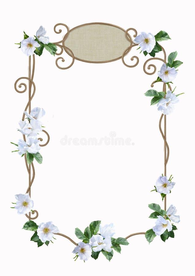 Marco de la flor de la acuarela ilustración del vector