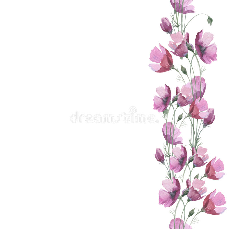 Marco de la flor de la amapola del Wildflower en un estilo de la acuarela aislado libre illustration