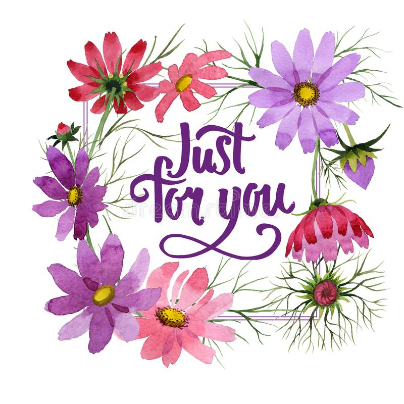Download Marco De La Flor Del Kosmeya Del Wildflower En Un Estilo De La Acuarela Stock de ilustración - Ilustración de flor, floral: 100526554