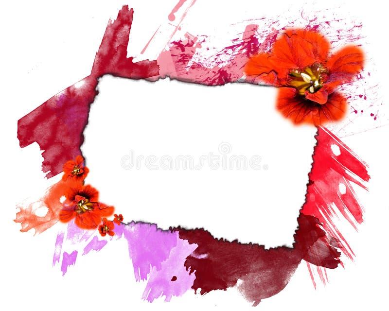 Marco de la flor y de la pintura fotografía de archivo