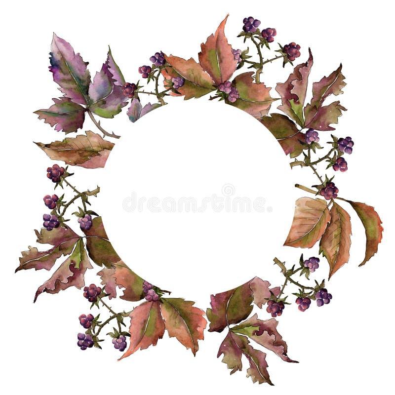 Marco de la hoja de Blackberry Follaje floral del jardín botánico de la planta de la hoja stock de ilustración
