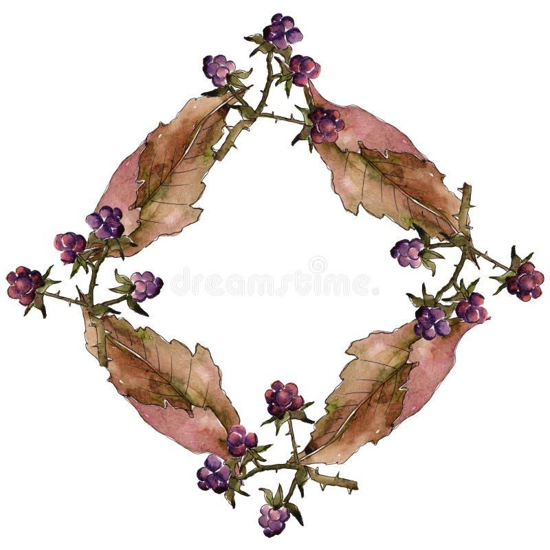 Marco de la hoja de Blackberry Follaje floral del jardín botánico de la planta de la hoja libre illustration