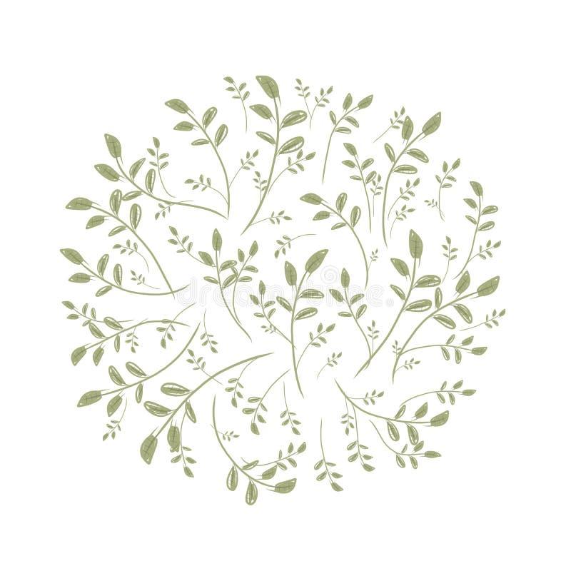 Marco De La Hoja De La Primavera Para Su Diseño Ilustración del ...