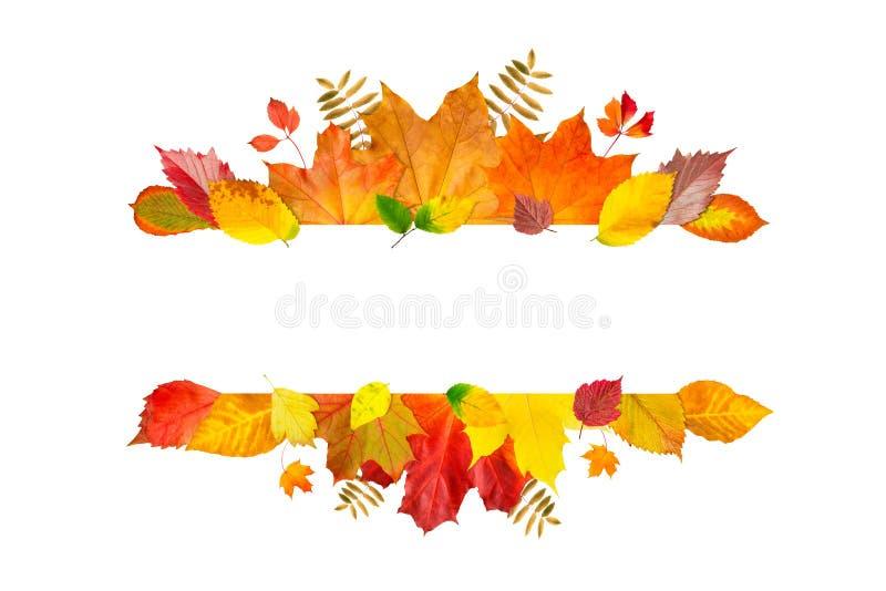 Marco de la hoja del oto?o Bandera de las hojas y de las ramas aisladas en el fondo blanco Ejemplo para las tarjetas de felicitac stock de ilustración