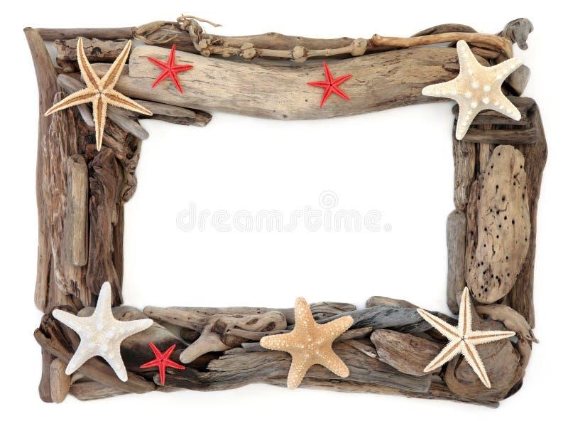 Marco de la madera de deriva y de las estrellas de mar foto de archivo