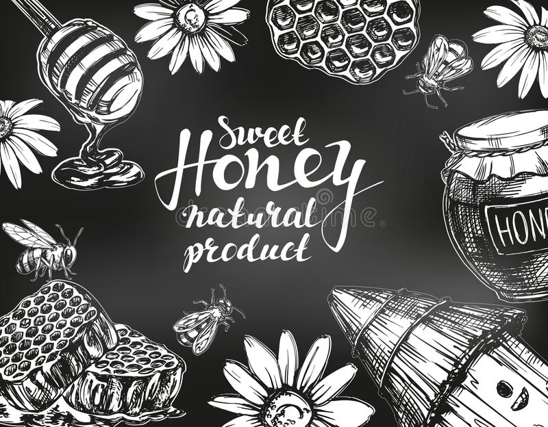 Marco de la miel dibujado con tiza en la pizarra Diseñe el conjunto de elementos Detallado grabado Vector dibujado mano del vinta stock de ilustración