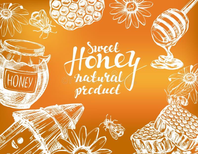 Marco de la miel dibujado con tiza en la pizarra Diseñe el conjunto de elementos Detallado grabado Vector dibujado mano del vinta libre illustration