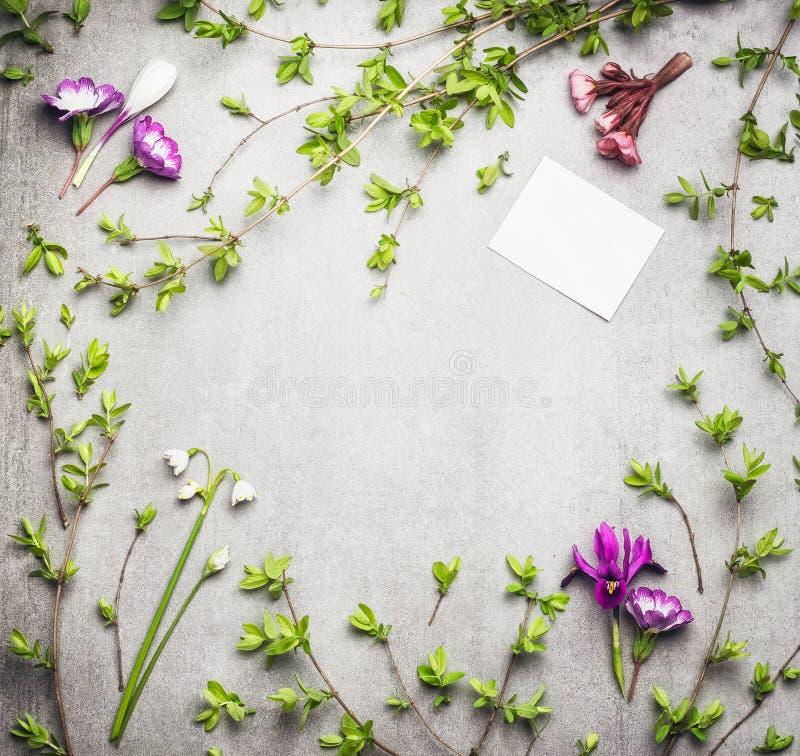 Marco de la naturaleza de la primavera con las ramitas de la primavera y flores y tarjeta en blanco del Libro Blanco fotografía de archivo libre de regalías