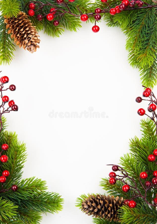 Marco de la Navidad del arte con el abeto y la baya del acebo imagen de archivo libre de regalías