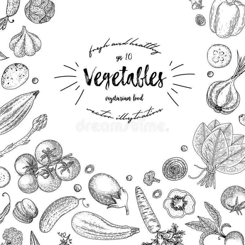 Marco de la opinión superior de las verduras Ejemplo dibujado mano del vector de la tinta Plantilla del diseño del menú del merca stock de ilustración